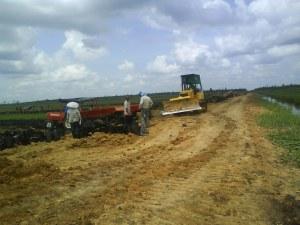 Rawa monoton tantangan pembangunan infrastruktur