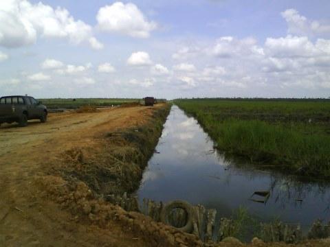 Pembangunan Jalan di wilayah rawa monoton